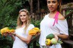 Alanya'nın tropical meyveleri