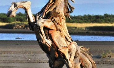 13. International Alanya wood scupture smyposium