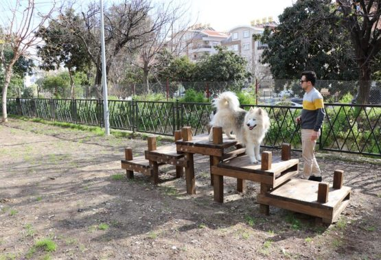 The first dog park in Alanya
