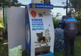 New feeding units for street animals