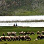 Photo By Lawyer Fatih Kısa, Eğri Göl